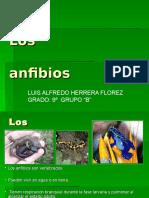 Los Anfibios-luis Alfredo Herrera