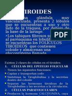 11.TIROIDES