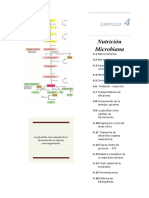 CapÃ-tulo 4 TeorÃ-A MicrobiologÃ-A General