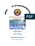 Biotech No l Oggy