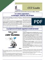 2016_04 CCI LEAKS.pdf