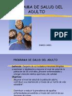 PROGRAMA_ADULTO_12-4.pptx