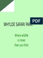 WSP (1)