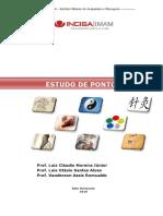 Apostila+Pontos+II+-+Vanderson