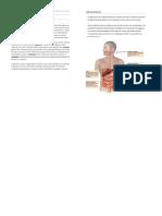 digestion physioex