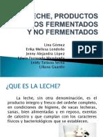 Leche y Productos Lacteos 2010-1
