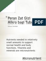 Peran Zat Gizi Mikro bagi Tubuh blok 5(1).pdf