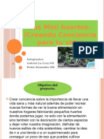 Proyecto Creando Conciencia, Los Minihuertos
