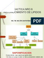 PRACTICA N° 6 RECONOCIMIENTO DE LIPIDOS.pptx