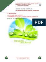 5.2-IDENTIFICACIÓN-Y-EVALUACION-DE-IMPACTOS-AMBIENTALES.docx