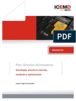Plan Director Ecommerce