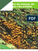 Ciencias 7ª Série - Capitulo 2 - Ed SM - Moneras, Fungos e Protistas