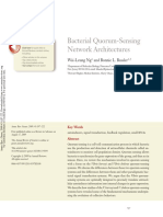 Bacterial Quorum-Sensing Network Architectures