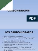 3. Los Hidratos de Carbono