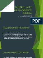Unidad 4 Características de Los Microorganismos Celulares
