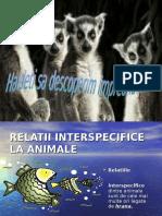 relatii interspecifice