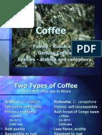 2-4coffee
