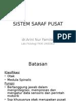 L2- SSP 2013.ppt