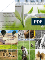 fertilizer_sector_financial_analysis.pdf