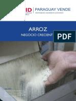 arroz.pdf