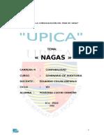 NAGAS.docx