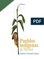 Pueblos Indigenas Mexico Navarrete c1 (1)