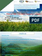 Ma. Del Carmen R Lopez Galindo Unidad 5