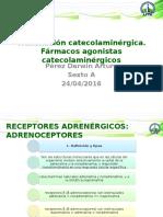 Transmisión catecolaminérgica