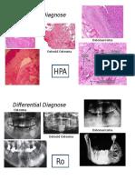Differential Diagnose