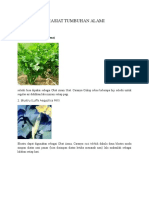Khasiat Tumbuhan Alami