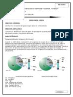 EMISIONES DE GASES.docx