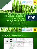 10146 Green Grass Ppt Template 0001