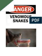 Dfotos serpientes