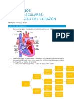 trastornos cardiovasculares 1