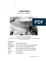 33 Tanaman TOKA DOWNLOAD SAMPLE.pdf