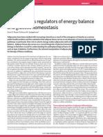 Adipocytes as regulators of energy balance and glucose homeostasis
