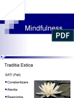 Mindfulness 2012 in romana