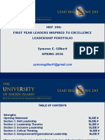 flite mini- portfolio