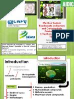 Synechococcus PCC 7002 - bicarbonato