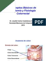 1.-Conceptos básicos de Anatomia y Fisiología Colo-Ano-rectal 2010