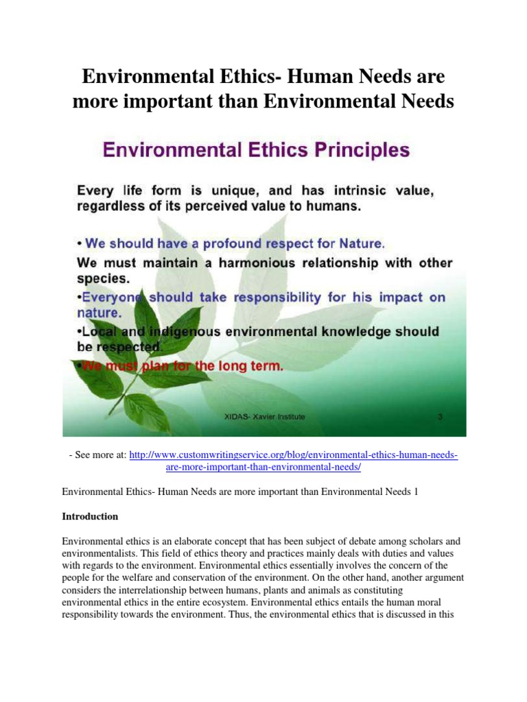 essay on environmental ethics kantian ethics essay amazon  environmental ethics human needs are more important than environmental ethics human needs are more important than