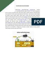 SULFUR DAN SULFUR DIOKSIDA (artikel kel X) (Ventilasi).docx