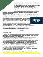 I E II SAMUEL,IE II REIS ,E IE II CRONICAS.pdf