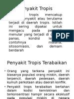 Translate Ppt 2