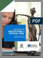 Maestria Derecho Penal