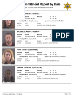 Peoria County Jail booking sheet 04/28/2016