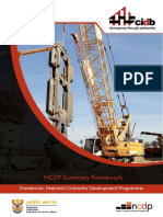 NCDP Summary Framework