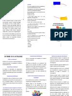 SoftwareActualidad(Triptico)