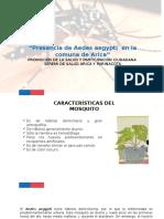 Presentación Aedes Aegypti