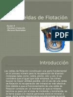 CeldadeFlotación.pptx